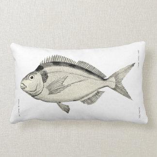 Kiwi Cushions Home Decor Pets Products Zazzlecomau