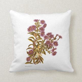 Vintage Science NZ Flowers - Olearia semidentata Cushion