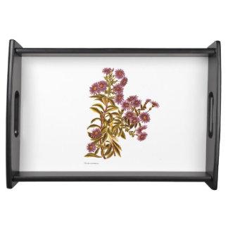 Vintage Science NZ Flowers - Olearia semidentata Serving Tray