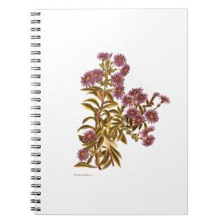 Vintage Science NZ Flowers - Olearia semidentata Spiral Notebook