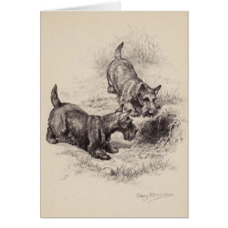 Vintage - Scottish Terriers & a Rabbit Hole, Card