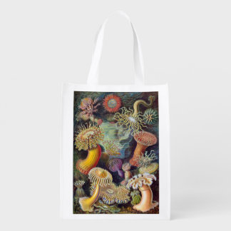 Vintage Sea Anemones by Ernst Haeckel Reusable Grocery Bags