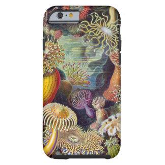 Vintage sea anemones scientific illustration tough iPhone 6 case