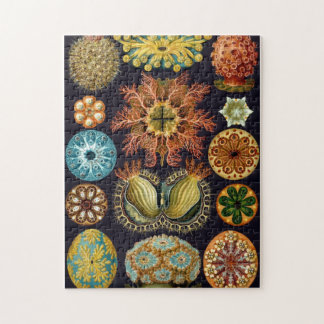 Vintage Sea Animals Jigsaw Puzzle