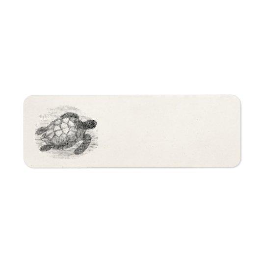Vintage Sea Turtle Personalised Marine Turtles Return Address Label