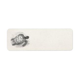 Vintage Sea Turtle Personalized Marine Turtles Return Address Label