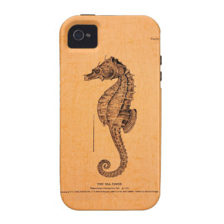 Vintage Seahorse Illustration on Apple® iPhone 4 Case-Mate iPhone 4 Cover