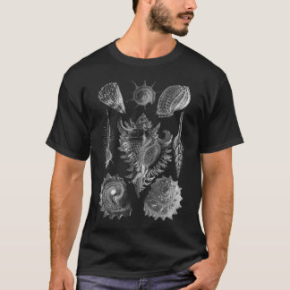Vintage Seashells Black T-Shirt