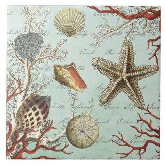 Vintage Seashells...tile Tile
