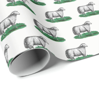 Vintage Sheep Ewe Farm Animals Drawing C Wrapping Paper