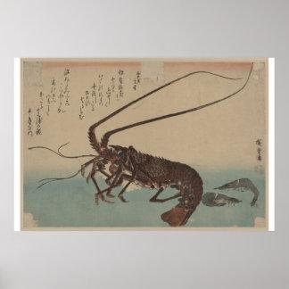 Vintage Shrimp and Lobster Artwork Poster