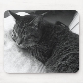 Vintage Sleeping Cat Photo | Mousepad