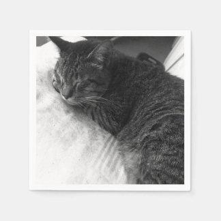 Vintage Sleeping Cat Photo | Napkin Disposable Napkin