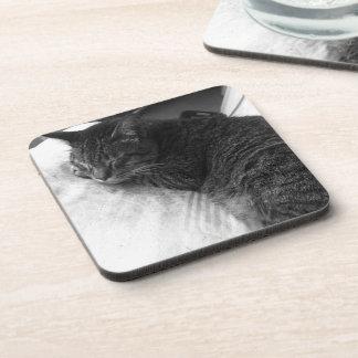 Vintage Sleeping Cat Photo   Throw Pillow Coaster