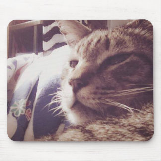 Vintage Sleepy Cat Photo | Mousepad