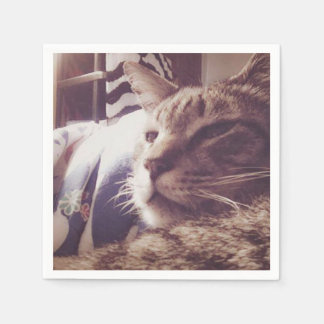 Vintage Sleepy Cat Photo | Napkin Disposable Napkins