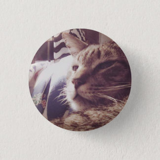Vintage Sleepy Cat Photo | Pin Button