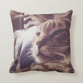 Vintage Sleepy Cat Photo | Throw Pillow