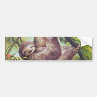 Vintage Sloth Illustration Bumper Sticker