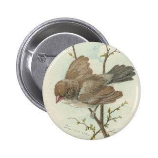 Vintage Sparrow 6 Cm Round Badge