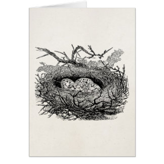 Vintage Speckled Eggs Bird Nest Personalized Birds Card