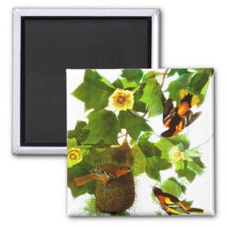Vintage Spring Day Birds & Flowers Magnet