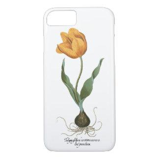 Vintage Spring Tulip Flowers by Basilius Besler iPhone 7 Case