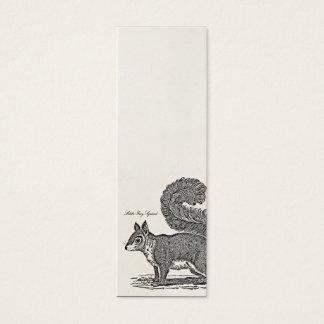 Vintage Squirrel Illustration - 1800's Squirrels Mini Business Card