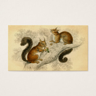Vintage Squirrel Print Business Card