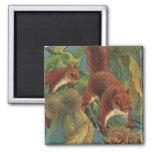 Vintage Squirrels, Wild Animals, Forest Creatures Square Magnet