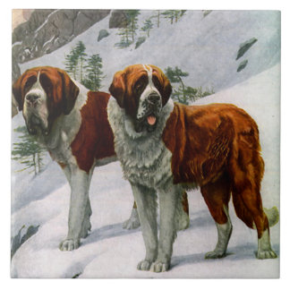 Vintage St. Bernards Large Square Tile