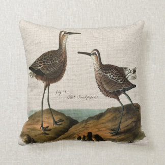 Vintage Stilt Sandpipers Cushion