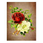 Vintage style red and yellow roses post cards