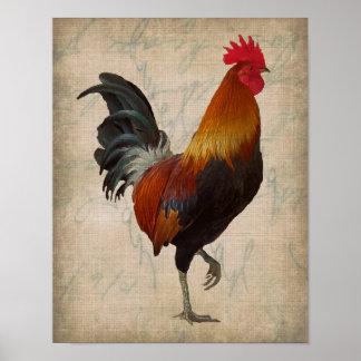 Vintage Style Rooster Design Poster