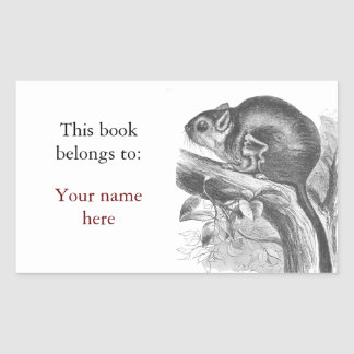 Vintage sugar glider illustration bookplate rectangular sticker