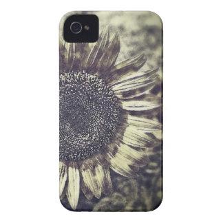 Vintage Sunflower artwork #2 - Blackberry case