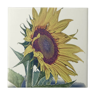 Vintage Sunflower Original Shabby Old School Look Ceramic Tile