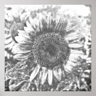 Vintage Sunflower painting artwork #1 - Posters