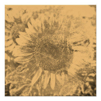 Vintage Sunflower painting artwork #2 - Posters