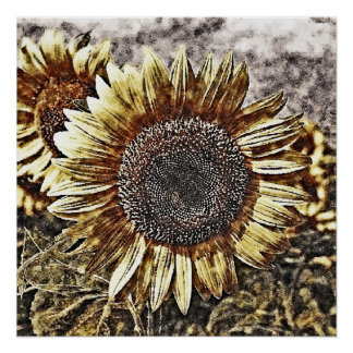 Vintage Sunflower painting artwork #4 - Posters