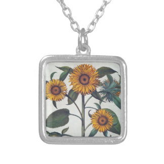 Vintage Sunflowers Illustration Silver Plated Necklace