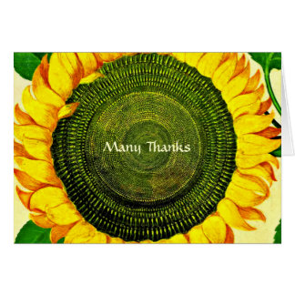 Vintage SunflowerThank You Card