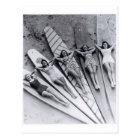 Vintage surf ladies Many Beach Australia Postcard