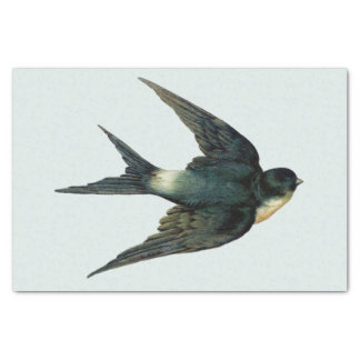Vintage Swallow Bird Illustration Tissue Paper