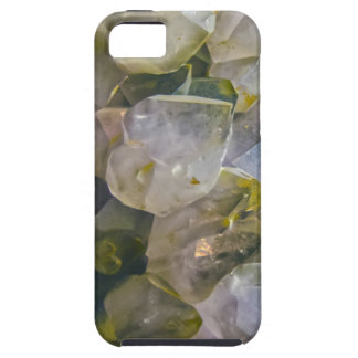 Vintage Swamp Crystals iPhone 5 Case