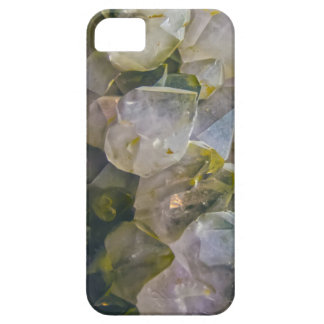 Vintage Swamp Crystals iPhone 5 Cover
