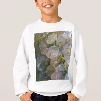 Vintage Swamp Crystals Sweatshirt