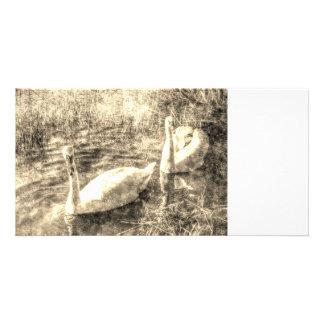 Vintage Swans Personalised Photo Card