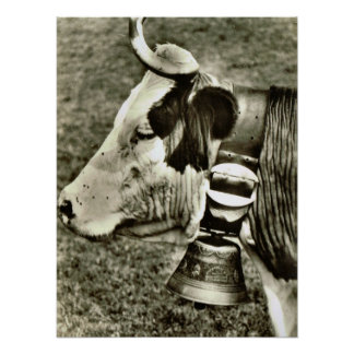 Vintage Switzerland, cow with cow bell Poster