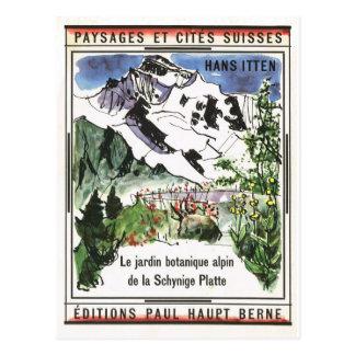 Vintage Switzerland, Schynigge Platte, 1909 12 Postcard